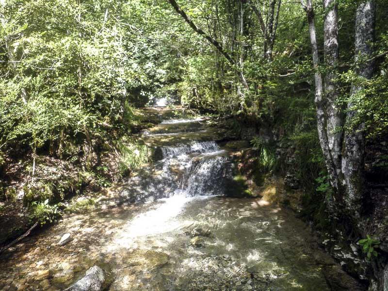 Vasques successives sur le ruisseau