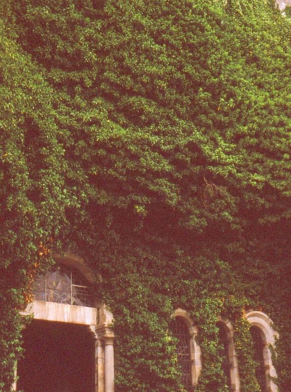 1985 Esterel Ste-Baume Eglise troglodytique de la Ste-Baume