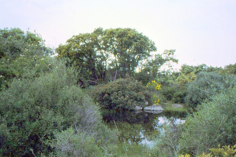 09- Mare de Roquehaute