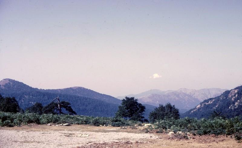 1983 17 05 07 Corse-Col de Vergio