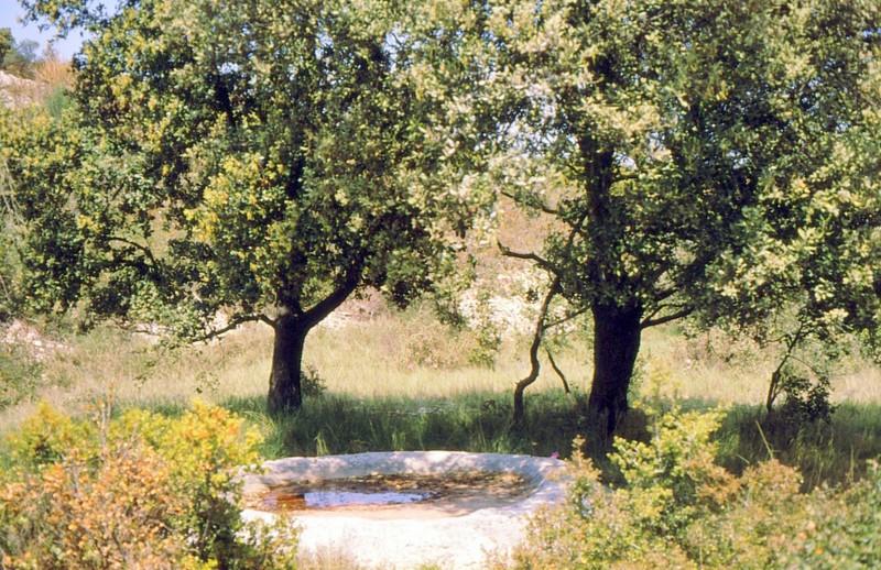 1989 13-Lavogne près du monastère troglodytique du GR42