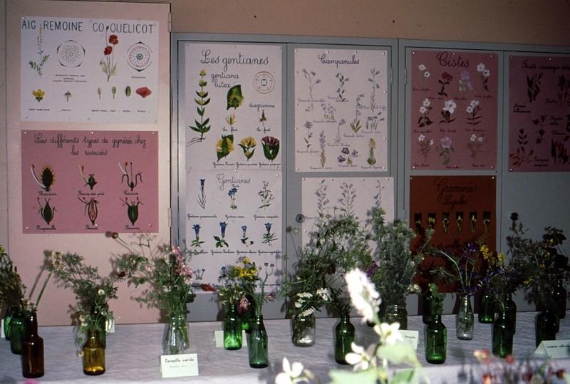 1990 37 Fleurs et dessins