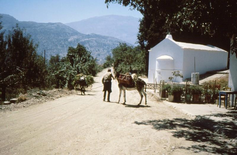 08-Katharo habitant et son mulet