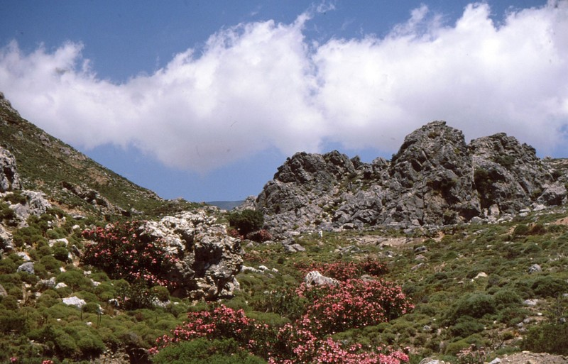 10- De Lefkogia à Sella et Frango Kastello