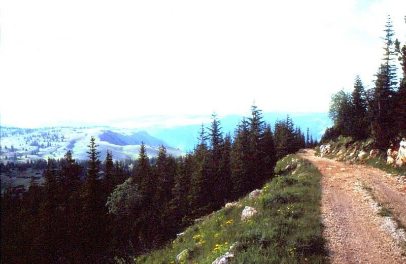 14- JU Piste grimpant à 1700 m