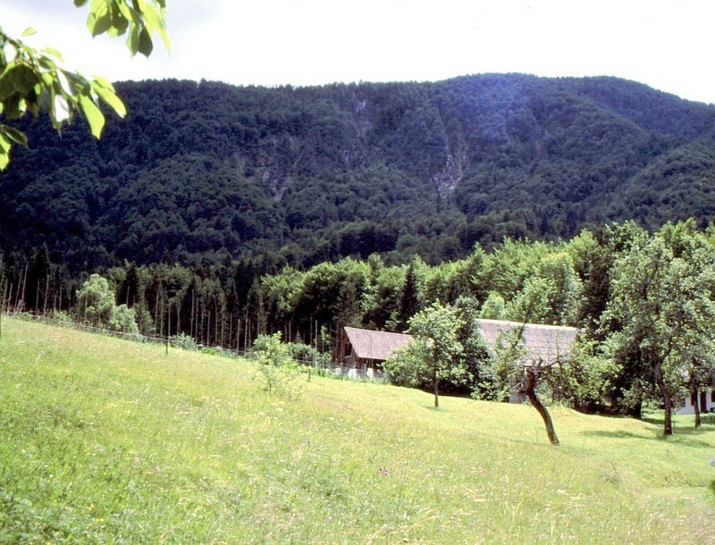 16- JU Triglav