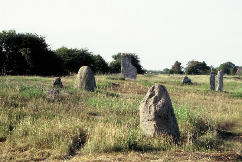 010 Pierres debout dans la lande de Stora Alvaret