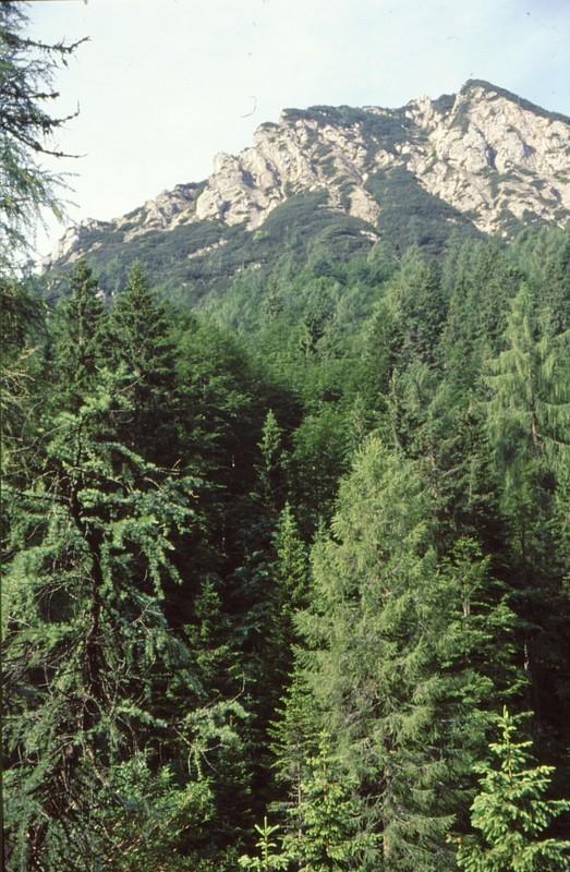 15-Mont Tinisa vu de Tita Piaz