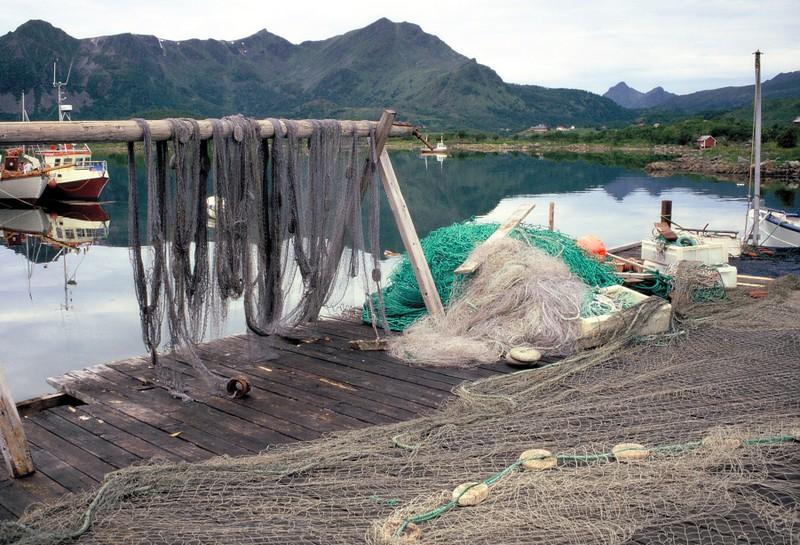 003- VESTER Vers pêcheur filets de pêche