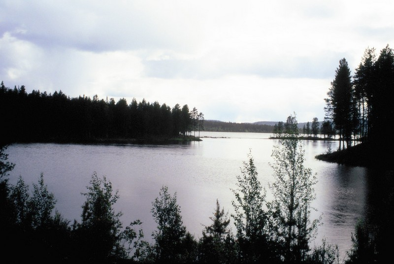 007- De Jokkmokk à Kvikkjokk en Laponie