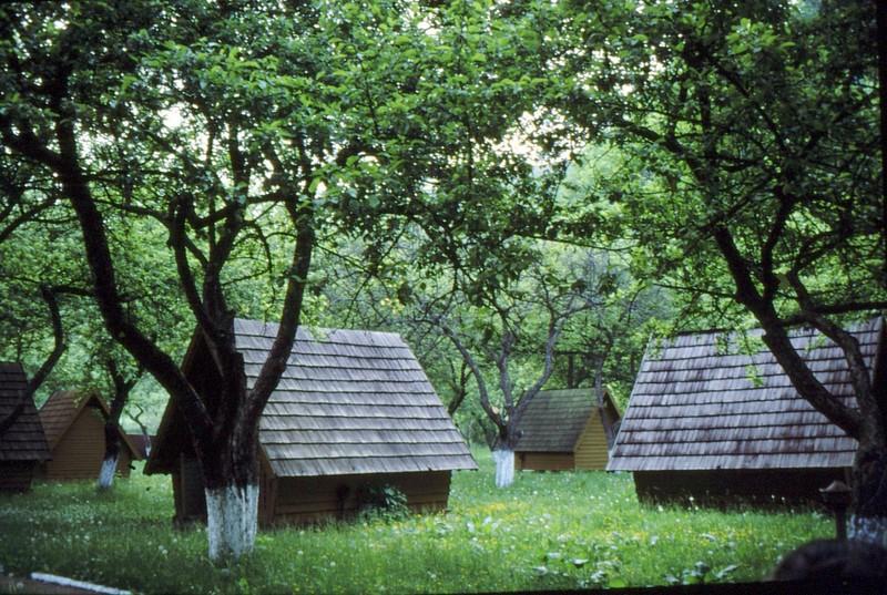 1993 30 Putna- cabanes