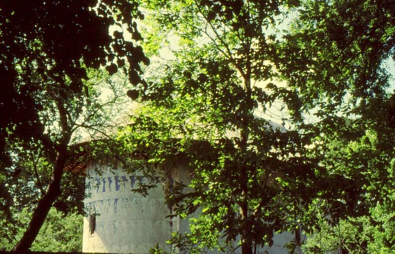 1993 34 Monastère Arbore
