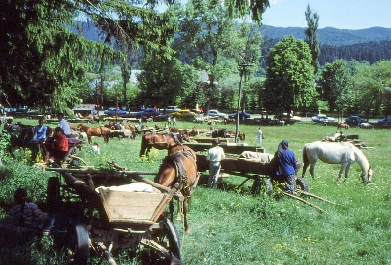 1993 49 Abords du monastère Neamt