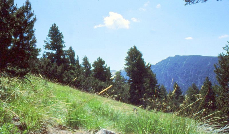 02-montee-au-sommet-de-maljovica