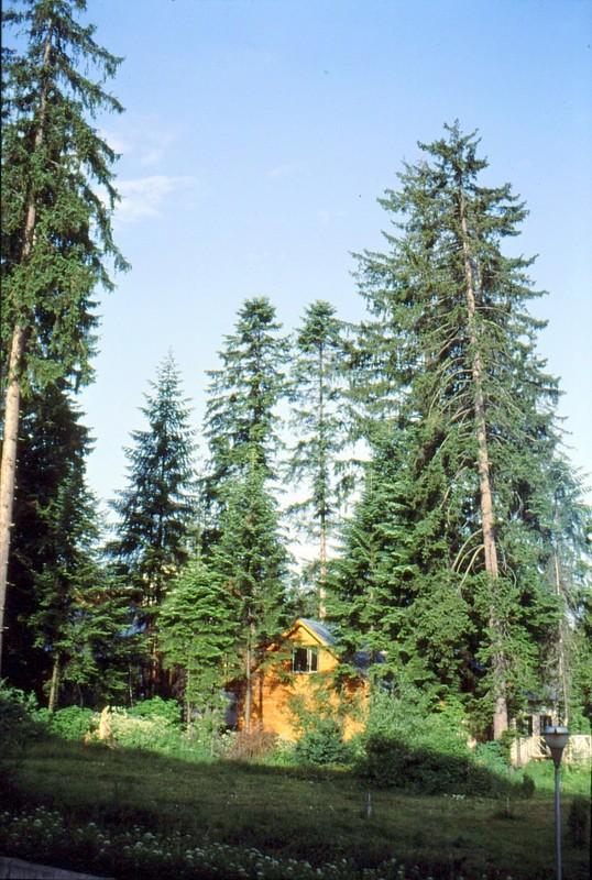 09-depuis-l-hotel-de-borovec