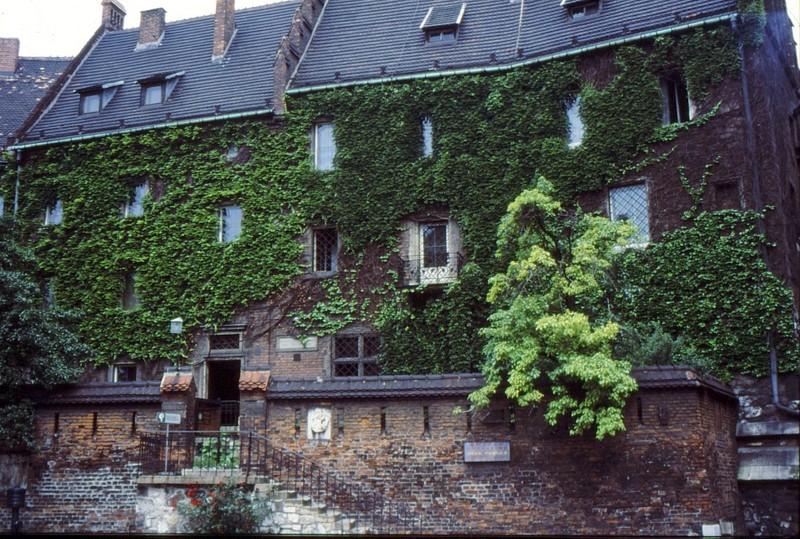 Wawel : Musée en face de la cathédrale