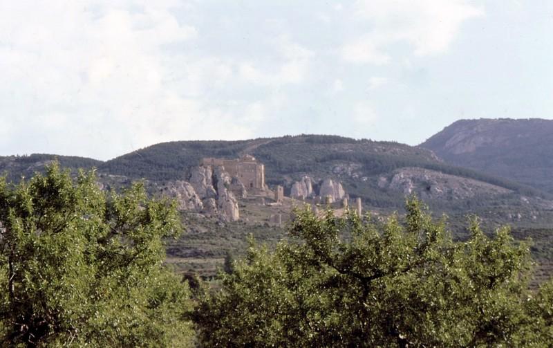 Château de Loarre vu depuis une plantation d'amandiers