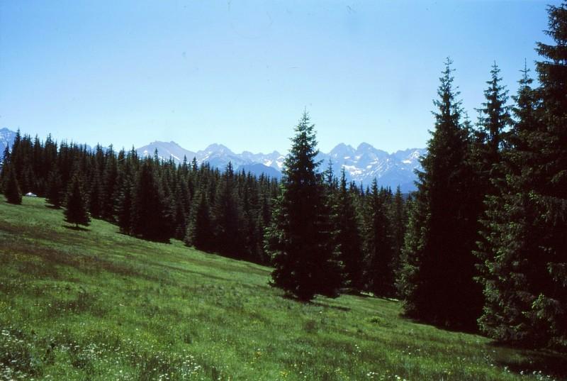 Les Tatras près de la frontière vers Lysa Polana