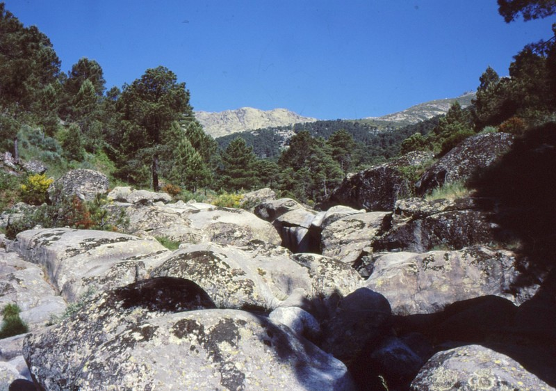 Torrent vers El Hornillo