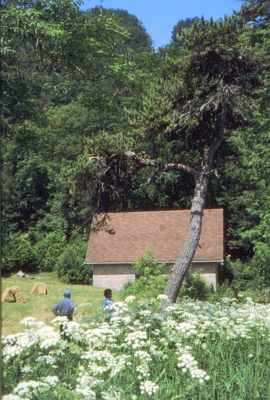 Ancien bâtiment de Chartreuse de Portes