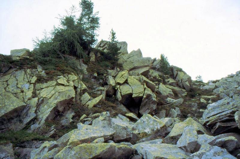 Eboulis d'Alpe Neves